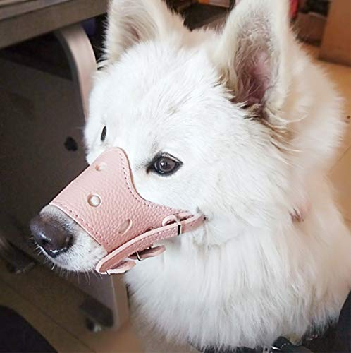 Barkless Dog Maulkorb aus Leder, bequem, sicher, Anti-Bell-Maulkorb für Hunde, atmungsaktiv und verstellbar, ermöglicht Trinken und Essen, Verwendung mit Halsbändern, Medium, rose