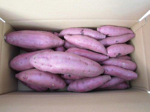 鹿児島県産 西山さんちの低温熟成酵素シルクスイート5kg