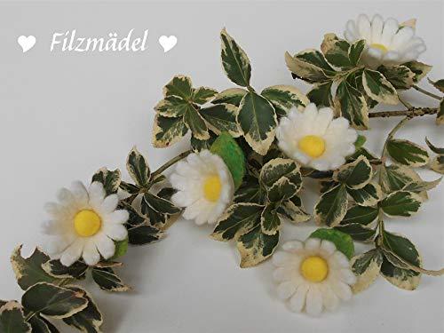 Filzblüten Margeriten, Gänseblümchen, gefilzt, 5er Set