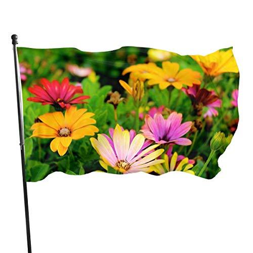 Garten Flagge Bunte Feld Flora Blütenknospen Langlebig 150X90 Cm Garten Flagge Yard Banner Strand Fahnen Haus Flagge Fly Brise Garten Flagge Outdoor Lebendige Druck Einfach Zu Bedienen Yard Flag