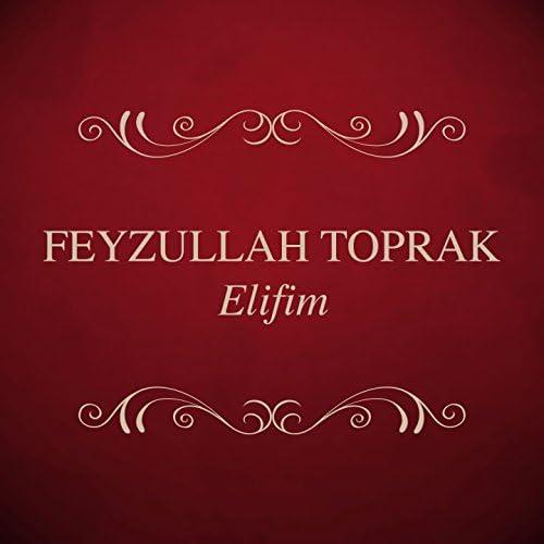 Feyzullah Toprak