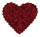 huaao Petali di Rosa 3000pcs Seta Artificiali Foglie di Rosa Finti Rossi, Decorazione Romantica per Matrimonio San Valentino Festa Proposta Matrimonio Atmosfera Natale, Rosso