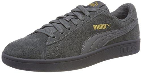 PUMA Unisex-Erwachsene Smash V2 Sneaker, Grau (Iron Gate), 44.5 EU