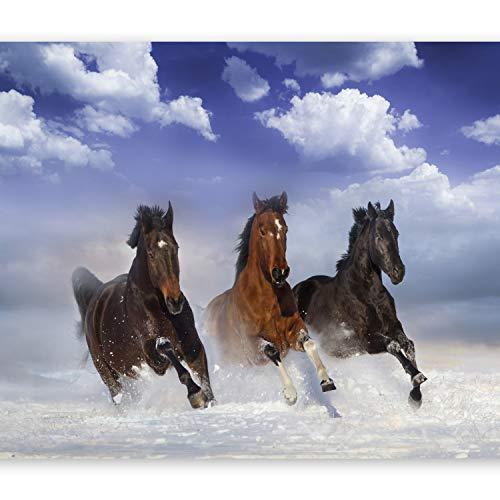 murando Fototapete Pferde 150x105 cm Vlies Tapeten Wandtapete XXL Moderne Wanddeko Design Wand Dekoration Wohnzimmer Schlafzimmer Büro Flur Himmel Tiere blau braun g-C-0078-a-a