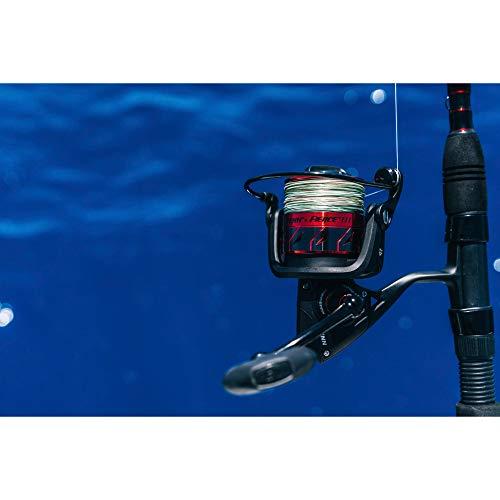 PENN Fierce II & Fierce III Spinning Fishing Reel (All Models & Sizes)