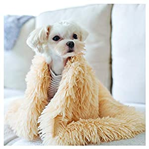 Loyanyy Fluffy Pet Blanket Warm Soft Blankets for Dog Puppy Cat Flannel Throw Dog Bed Covers Pure Plush Mat Beige Large(39″29″)