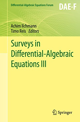 Surveys in Differential-Algebraic Equations III (Differential-Algebraic Equations Forum Book 3) (English Edition)