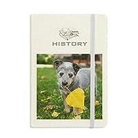 ハンサムな子犬・ペット写真撮影の写真 歴史ノートクラシックジャーナル日記A 5