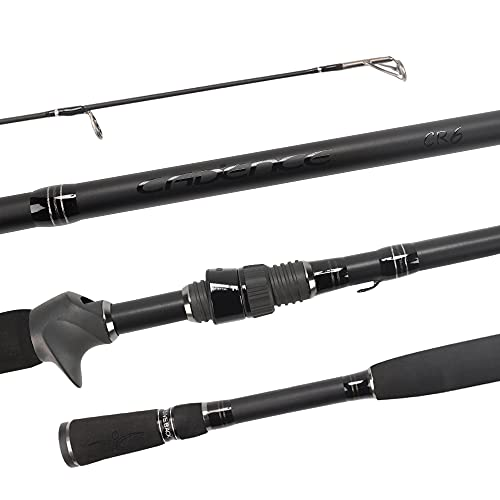 Cadence CR6B Baitcasting Rods Fast Action Fishing Rods
