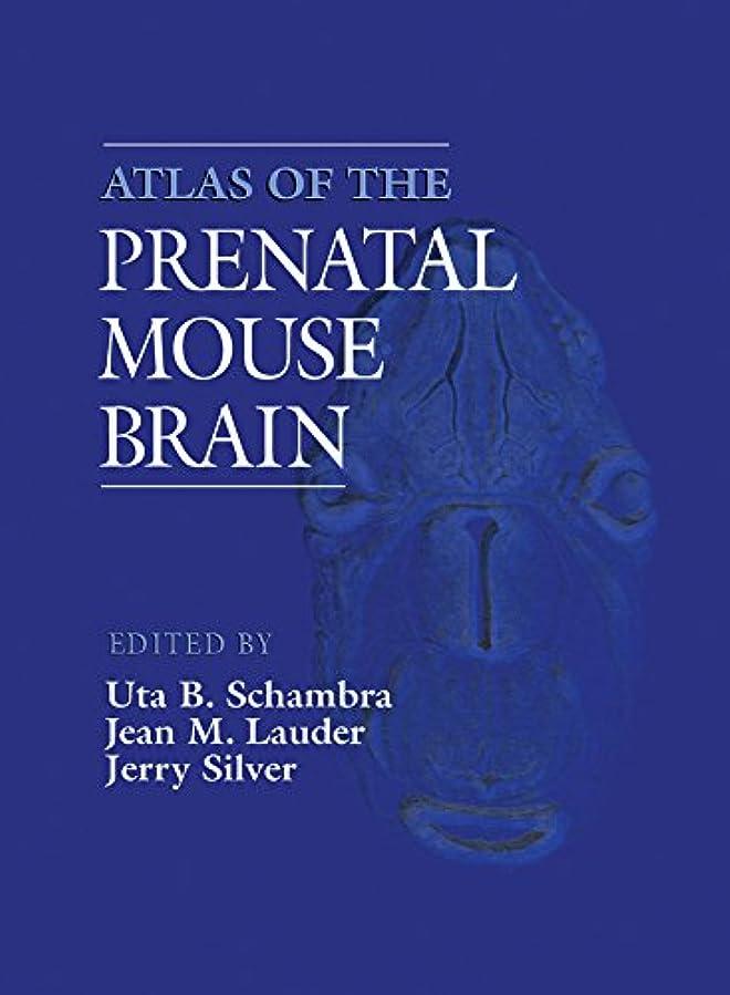 最小化する待つ感情Atlas of the Prenatal Mouse Brain (English Edition)