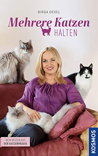 Mehrere Katzen halten: Mein Wissen aus der Katzenpraxis
