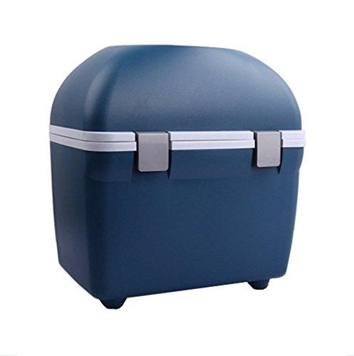 wenrit Mini Coche refrigerador portátil Coche Mini Venta Caliente refrigerador y calefacción termostato 20L Doble Uso Caliente y frío