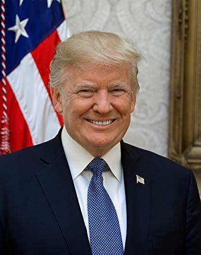 Donald J. Trump Photograph - Historical Artwork from 2017 - US President Portrait - (5