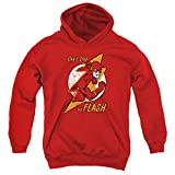 DC Flash Flash Bolt Unisex Youth Pull-Over Hoodie, Red, Small