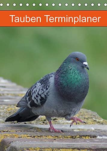 Tauben Terminplaner (Tischkalender 2022 DIN A5 hoch)