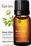 Aceite esencial de Rose Otto: un remedio calmante para suavizar los signos del envejecimiento...
