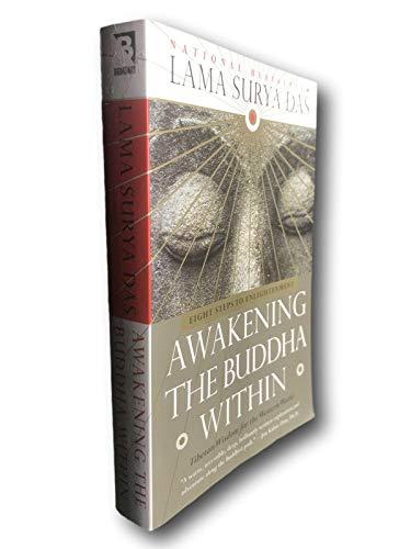 Rare Awakening the Buddha Within Lama Surya Das Buddhism Religion Enlightenment Steps
