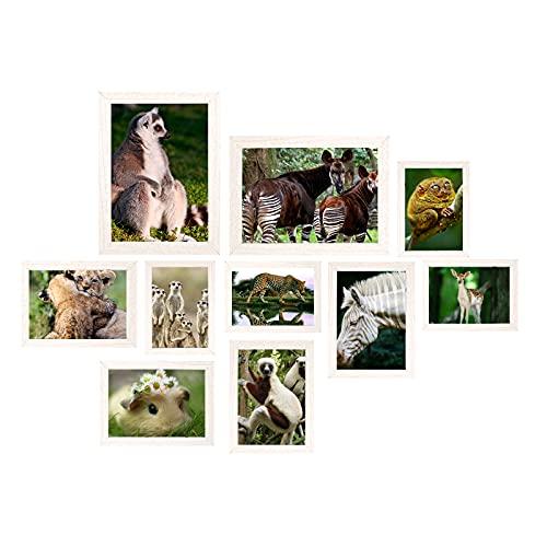 Rocorose Foto Posterrahmen Weiß Holzrahmen Collage Set Verschiedene Größen Glas Bilderrahmen Für Bildercollage
