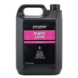 Animology Puppy Shampoo_PC