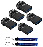 SanDisk 16GB Ultra Fit USB 3.1 Low-Profile Flash Drive (5 Pack Bundle) SDCZ430-016G-G46 Pen Drive with (2) Everything But Stromboli (TM) Lanyard