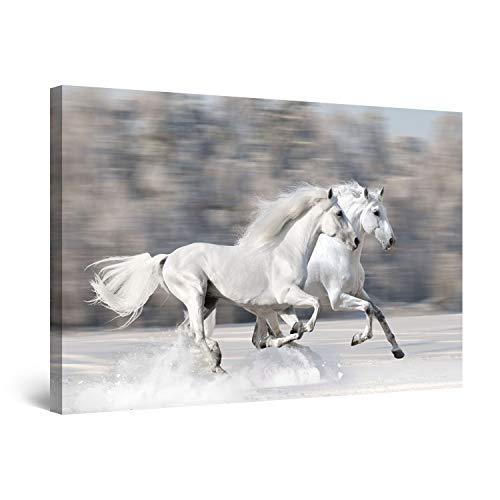 Startonight Cuadro Moderno en Lienzo Dos Caballos Blancos, Paisaje Animales Para Salon Decoración Grande 80 x 120 cm