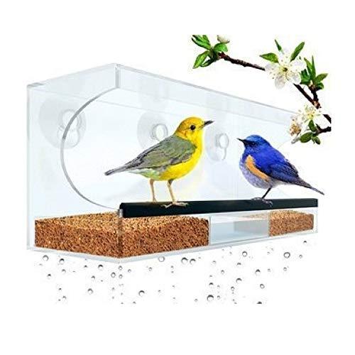 Premium Fenster Vogelfutterspender Vogelhäuschen Mit Abnehmbarem Tablett, Ablauflöcher Und 3 Saugnäpfe, Transparent Für Fenster, Wände,30 * 10 * 13CM
