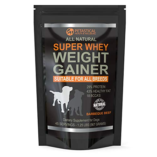 Petastical Dog Weight Gainer Supplement - All Natural Super Whey Protein Powder Suitable For All Breeds Of Dogs - Muscle Builder For Dogs Who Need To Put On Weight - Made in USA