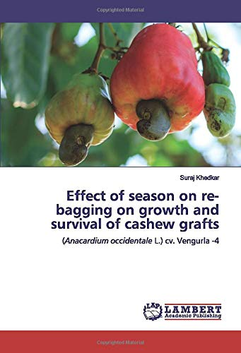 Effect of season on re-bagging on growth and survival of cashew grafts: (Anacardium occidentale L.) cv. Vengurla -4