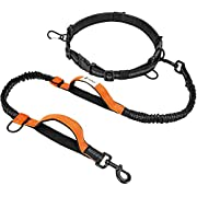 Hands Free Dog Leash F-color Reflective Running Dog Leash with Double Padded Handles and Strong Bungees, Adjustable Waist Belt for Walking Jogging Hiking,Shock Absorbing, Black