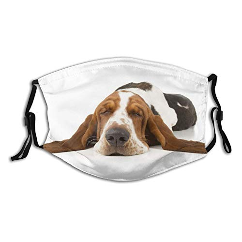 The Cult of The Basset Hound Dog Print Cloth Face Mask, Adult Washable Reusable Adjustable Earloops Balaclava with 2 PCS Fliter for Men Women