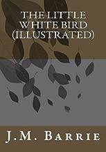 The Little White Bird (Illustrated)