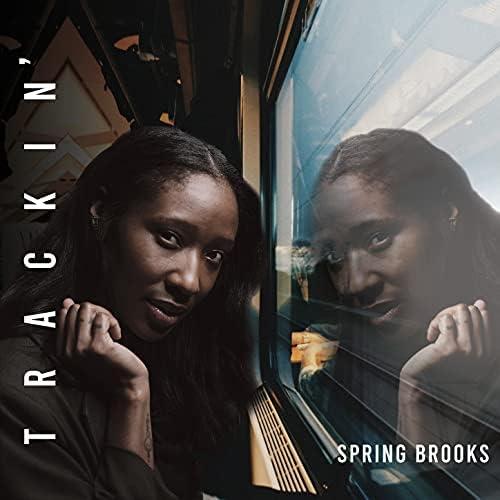 Spring Brooks