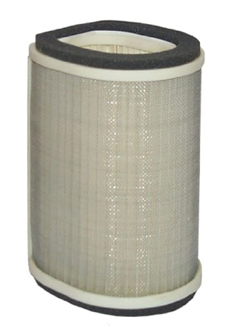 Hiflofiltro HFA4912 Premium OE Replacement Air Filter
