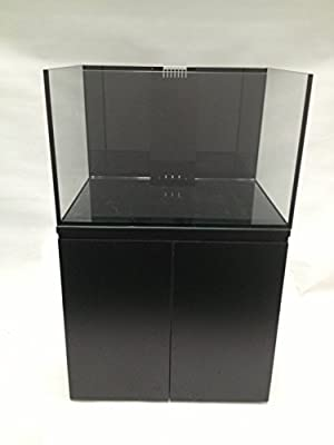"SCA 66 Gallon Starfire Rimless Aquariums Pnp System 32x24x20"" 10mm with Built-in Overflow"