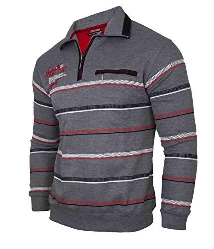 Soltice Herren Poloshirt Langarm, Sweatshirt, Polohemd, Blousonshirts mit Kragen - Grösse M bis 3XL (2XL, Grau [D3])