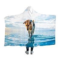 Cute Dog毛布、フランネル、マイクロファイバー、ラージフォーマット、ひざまずく、空調対策、帯電防止、抗菌、デオドラント、ふわふわ、肌にやさしい、薄く、軽量、洗える、暖かい、ファッショナブル、四季60*80cm