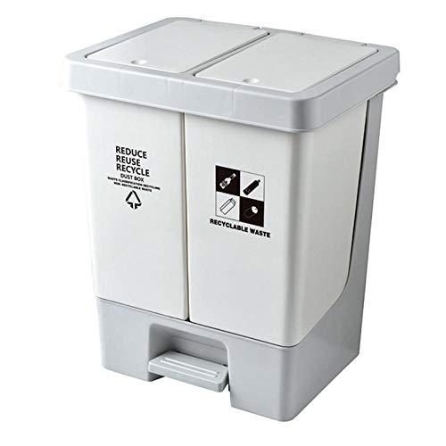 20L Papelera Cocina Reciclaje de El Plastico 2 Cubos de Basura Cocina Reciclaje de 10L Cubos de Basura Extraible con Pedales,Tapa con Bisagras
