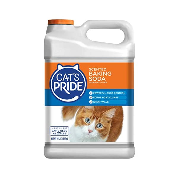 Cat's Pride Lightweight Baking Soda Cat Litter, Scented 10lb Jug (C01945-C60)