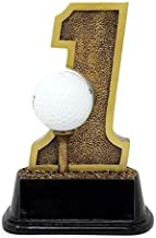 Decade Awards Golf Hole-in-One Trophy - Golf Tournament Award - 6 Inch Tall - Customize Now