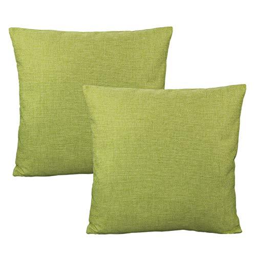 All Smiles Verde Exterior Fundas de Cojín Almohada Decorativas para Hogar Muebles de Patio Primavera Verde Salvia Manzana para Sofá Cama Decoraciones Asiento 45x45CM,2PC