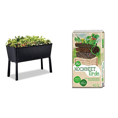 Keter Hochbeet Easy Grow, Graphit, inkl. Bewäserungssystem & Universal Bio Hochbeet-Erde 40 Liter