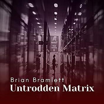 Untrodden Matrix