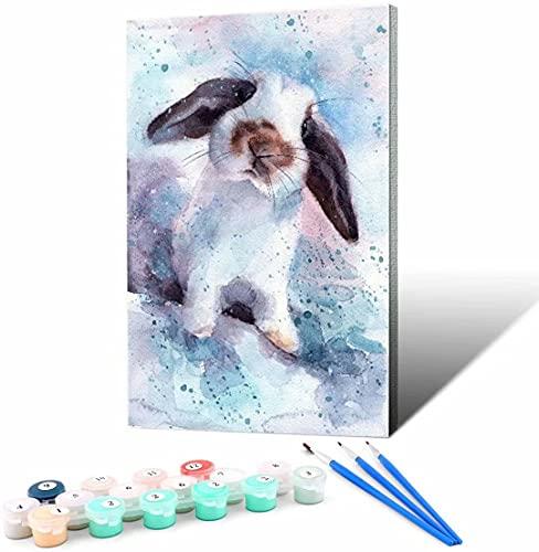 Vfvozr Kits de Pintura por números_Conejito Lindo_Lienzo Pintura al óleo Pintura acrílica_DIY con Lupa 3X Pinturas acrílicas y Pinceles_40x50cm_Sin Marco