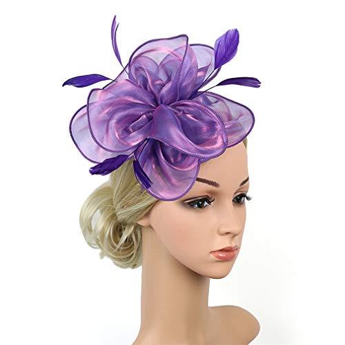 HIDOLL Femmes élégantes Fascinator chapeau nuptiale plumes cheveux clip accessoires cocktail Royal Ascot (G1-VIOLET)