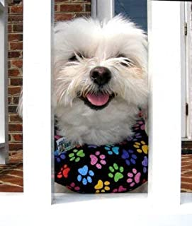 Puppy Bumper - Keep Your Dog on The Safe Side of The Fence - Rainbow Paw