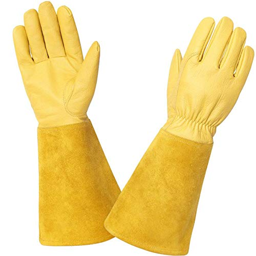 KIM YUAN Gardening Gloves- Acdyion Rose Pruning Thorn & Cut Proof Long Forearm Protection Gauntlet Durable Cowhide Work Garden Gloves Suitable for Pruning Cacti Rose and Thorny Bushes (YELLOW M)