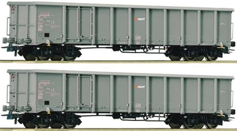 Roco 76099 2er Set offene Güterwagen Eanos AWT grau