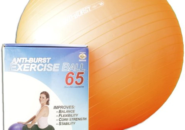 Anti Burst Yoga Ball 65 cm with Hand Pump. 600 lb. Capacity. GS Qualified