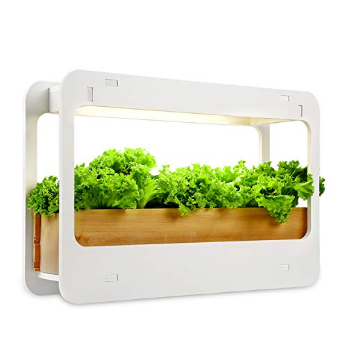 TORCHSTAR Indoor Herb Garden, Kitchen Plant Grow LED Light Kit with Timer Function, 24V Low Voltage, Indoor Harvest Elite for Gourmet or Plant Enthusiasts, Pots & Plants Not Included