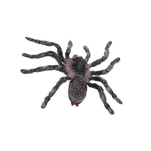 Vektenxi Realistische Wissenschaft Kunststoff Tiermodell Figur Brasilianische Weiße Spinne Figur Kinder Kinder Pädagogisches Spielzeug Dekoration